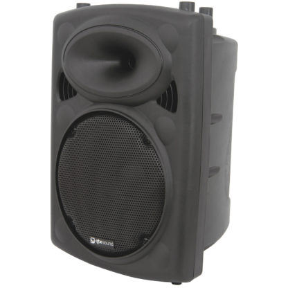 "QR10 10"" 150w RMS moulded cabinet speaker"