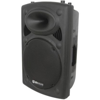 "QR15 15"" 250w RMS moulded cabinet speaker"