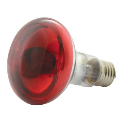 160.002 R80 Coloured Reflector Lamps