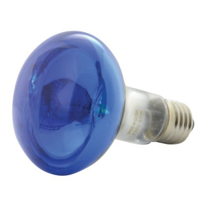 160.003 R80 Coloured Reflector Lamps