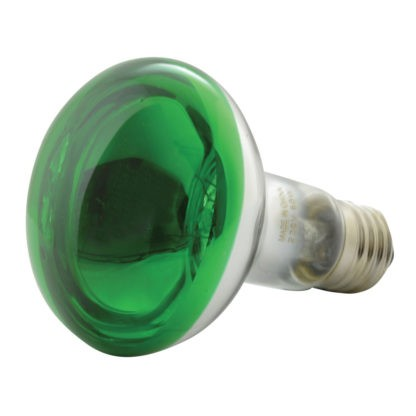 160.004 R80 Coloured Reflector Lamps