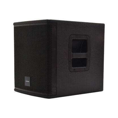 CASA-10BA 250w 10″ sub cabinet speaker