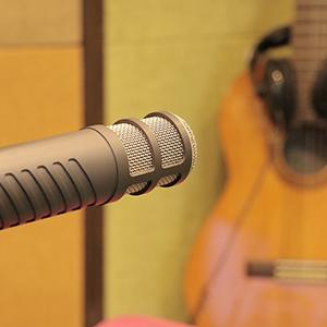 Instrument & Vocal Microphones